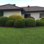 HSP-Dienste-Gartenpflege